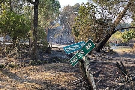 burned out street after a wildfire with street signs propped up