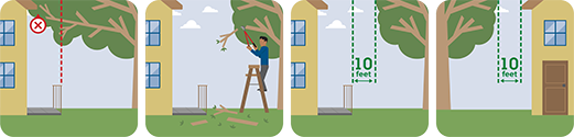 This pictographs shows you to keep trees and branches away from your home.