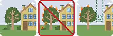 This pictograph  shows ladder fuels too close to a house.