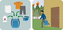 This pictograph  shows you to have a prepacked kit to prepare for wildfire.